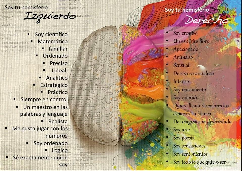 A mi parecer un diseñador usa su cerebro al 100% usa tanto su hemisferio  izquierdo como el derecho ps ambos nos brindan factores que nos ayudan a ... aed74210c43